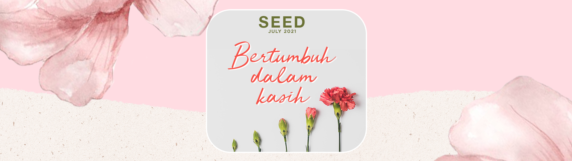 Monthly SEED